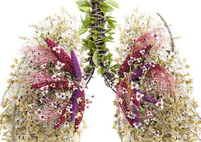 Lungor av blomster